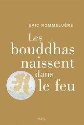 bouddhas-couverture800x540